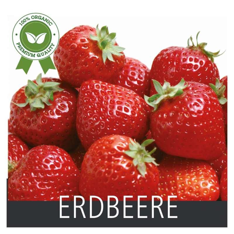 Produkt -Erdbeere 21 x 21